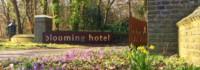 yoga weekend retreat Bergen blooming hotel